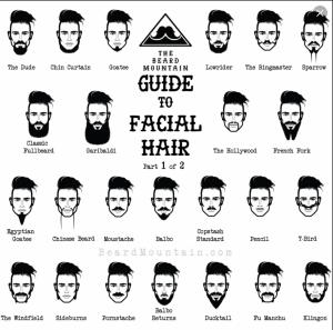 A comprehensive guide to facial hair