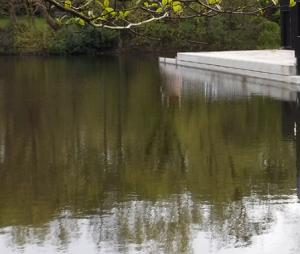 Kenwood Ladies Pond- Hampstead Heath