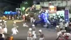 Elephant run amok in religious festival