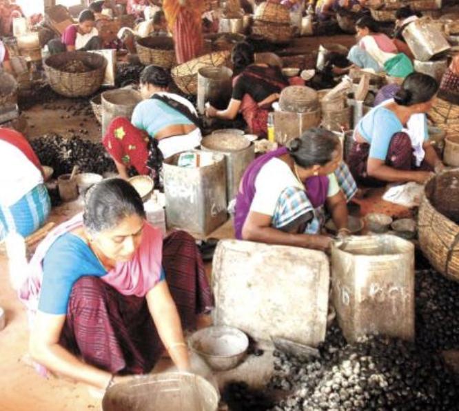 Cashew factory in Kollam