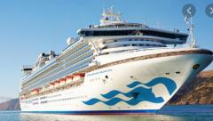 Virus hit Diamond Princess Cruise ship