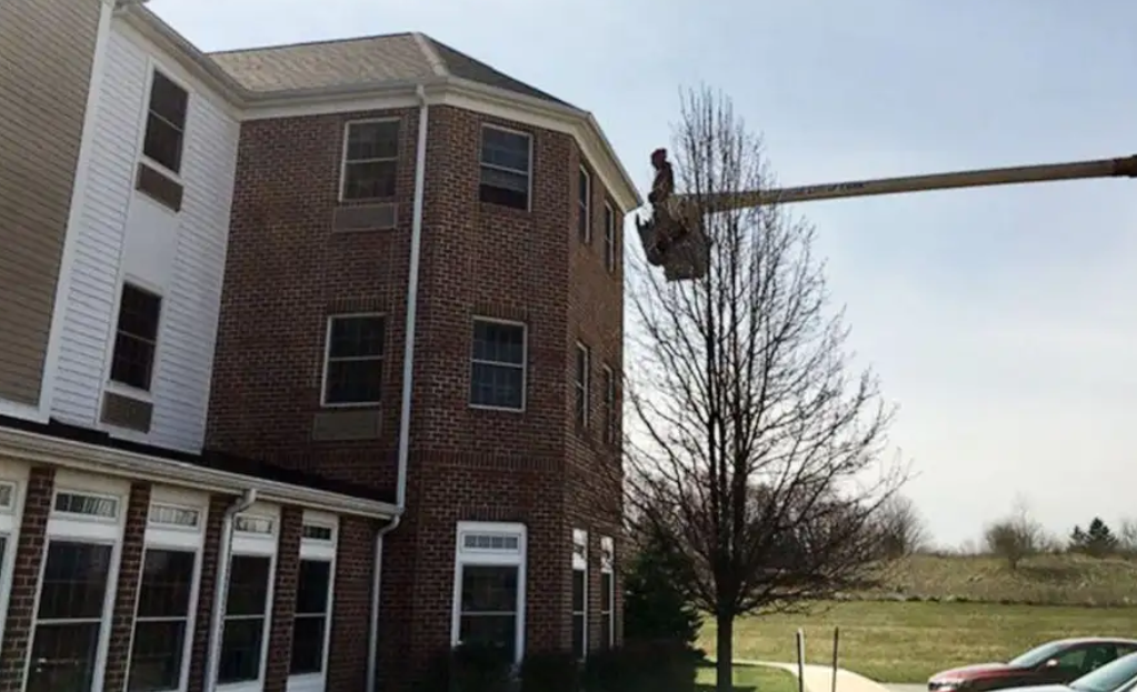 Charley Adams used his truck-mounted cherry picker to reach his mother's third-floor window for face-to-face sight time through the glass.