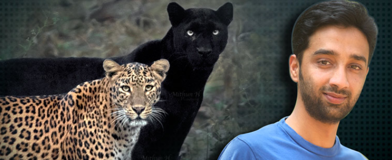 Sayya the Black Panther and Lepordress with Mithun H