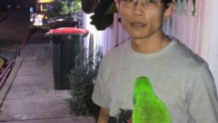 Eric the Parrot saves Nguyen from fire